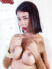 Cartoon Candy is a gorgeous young tgirl with an amazing body, big perky tits, a sexy ass and a delicious uncut cock! See this pretty tgirl fucking her